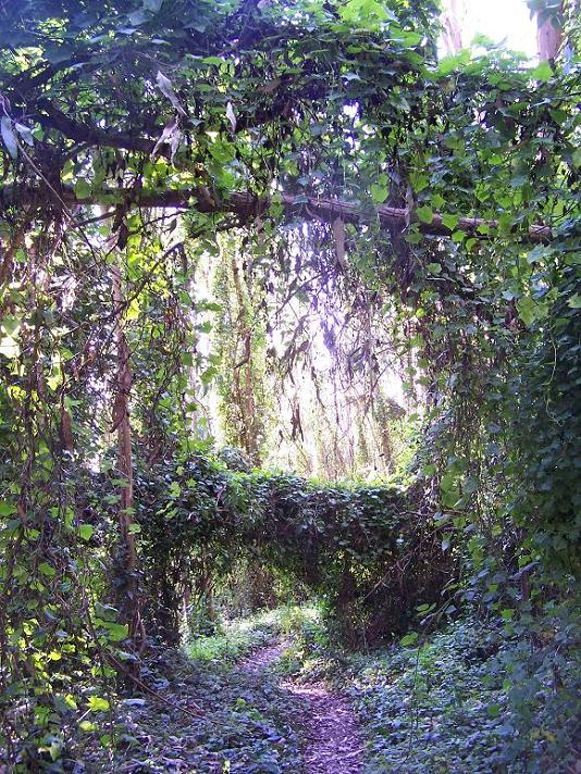 Period Piece: A walk in the (man-made) woods
